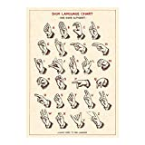 Cavallini - Wickeln Sie Poster Sign Language Chart - 20 x
