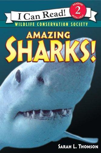 Amazing Sharks!...
