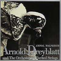 Animal Magnetism by Arnold Dreyblatt (1995-05-23)