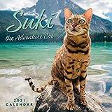 Suki the Adventure Cat 2021 Wall Calendar