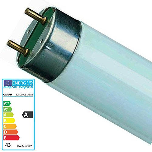 10 Stück Leuchtstofflampen L 36 Watt 865 - Osram