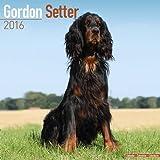 gordon setter 2016 calendar
