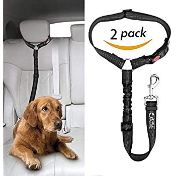 1.2-1.8M leash for dogs with car safety belt,Comfortable padded handle and reflective threads,Bungee leash with traffic control handle IOKHEIRA dog leash,Adjustable