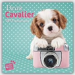 Dear Cavalier - Cavalier King Charles Spaniel 2017 - 18-Monatskalender: Original Myrna-Kalender[Myrna Huijing][Amazon]