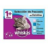 Whiskas Multipack de Comida Húmeda en Gelatina para gatos adultos Selección Pescados (Pack de 13 x 4 bolsitas x 100g)
