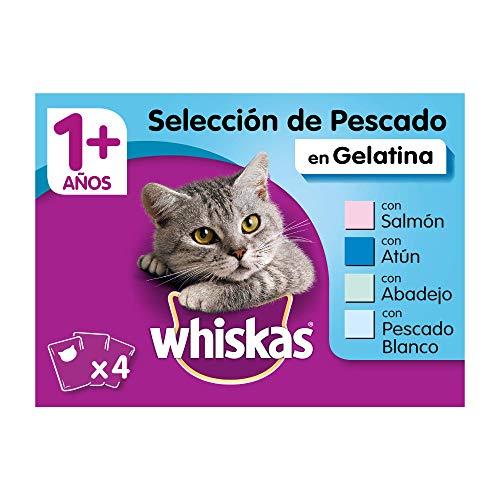 Whiskas Comida Húmeda para Gatos Selección Pescados en Gelatina, Multipack (Pack de 13 x 4 bolsitas x 100g) ✅