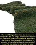 Hazen & Associates Moss Carpet Natural Forest Moss Aisle Runner Floral Decoration 9 ft x 4 ft