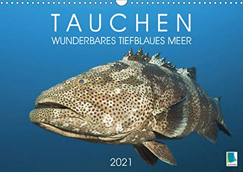 Tauchen: Wunderbares tiefblaues Meer (Wandkalender 2021 DIN A3 quer)