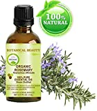 Organic ROSEMARY Essential Oil. 100% Pure Therapeutic Grade, Premium...