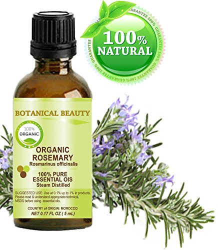 Organic ROSEMARY Essential Oil. 100% Pure Therapeutic Grade, Premium Quality, Undiluted, Steam Distilled. 0.17 Fl.oz.- 5 ml. by Botanical Beauty.