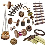 SNOMEL 15 Pack Small Animal Combo Apple Wood Activity Toys, Hamsters Chew Toys, Rat Chinchilla Snacks Toys for Pets Organic Natural Accessories (15PCS)