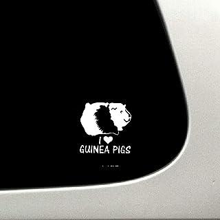 Suchergebnis Auf Für Meerschweinchen Aufkleber Auto Motorrad