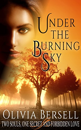 Book: Under The Burning Sky (The Amarin Trilogy) by Olivia Bersell