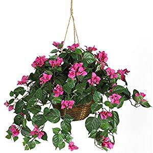 Nearly Natural 6608 24in. Bougainvillea Hanging Basket Silk Plant,Beauty,10.25″ x 10.25″ x 17.5″