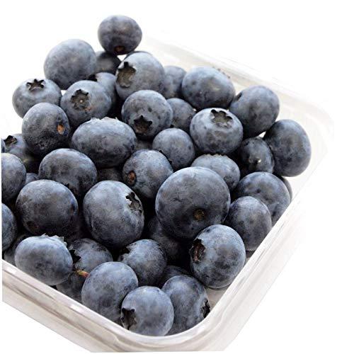 ブルーベリー 無農薬栽培  200g×4パック