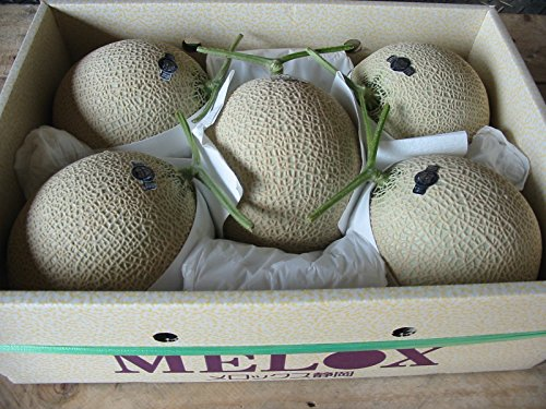 静岡県産 マスクメロン 5~6玉入り 9kg以上詰め メロン