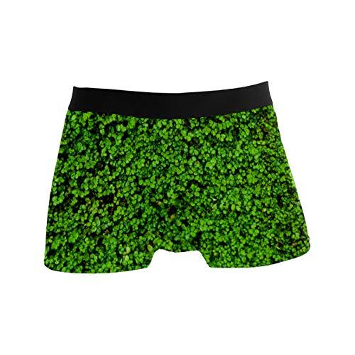 Herren-Boxershorts, atmungsaktiv, dehnbar, Geschenkidee für Jugendliche, Jungen, Glücksklee, Kleeblätter - - Large
