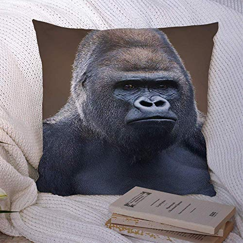 Fundas de almohada decorativas para sofá cama, sofá, mirada marrón, gorila, macho, espalda plateada severa, en animales, aspecto de vida silvestre, naturaleza, mono rojo, bestia, busto, nariz, funda d
