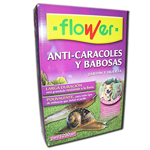 Flower 20569-anti-500gr 500gr escargots