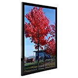 Medog 11x14 Picture Frames Black Diploma Frame without Mat to Display Pictures 11 by 14 Inch, 8x10 9x11 8x10 with Mat(not include) Wall Mounting Document Certificate Frames (P1G 1P BA)