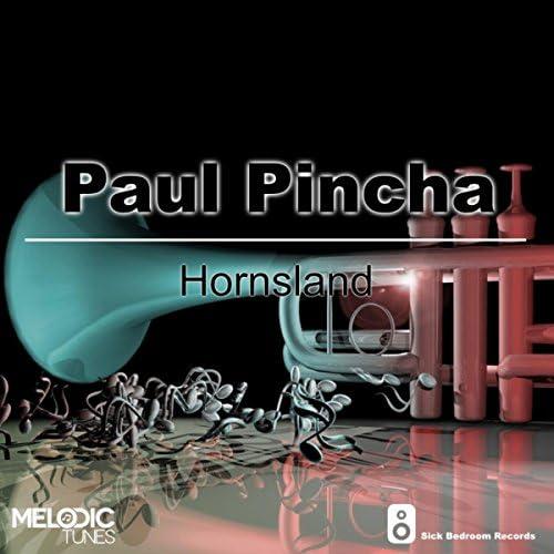Paul Pincha