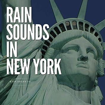 Rain Sounds in New York