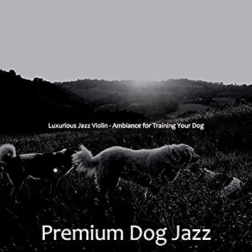 Luxurious Jazz Violin - Ambiance for Training Your Dog