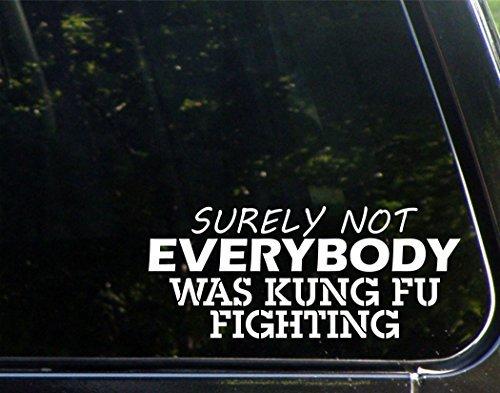 Pegatinas divertidas para motocicletas con texto en inglés 'Surely Not Everybody was Kung Fu Fighting Car Laptop Stickers para adultos 22,86 cm