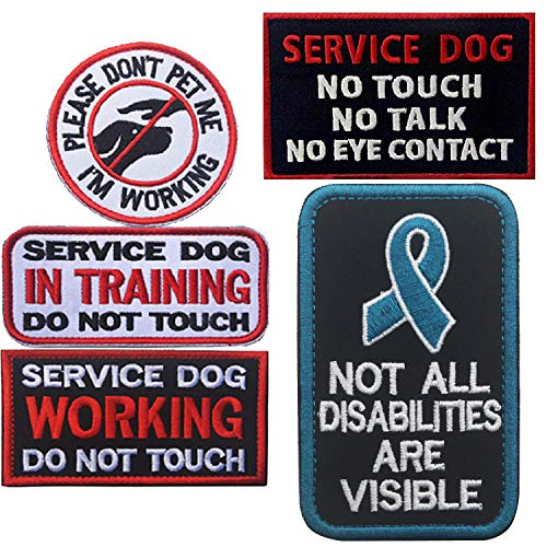 ODSP Service Dog Patches, in Training, Not All Disabilities are Visible, I'm Working Please Don't Pet Me, Working, No Touch No Talk No Eye Contact Embroidered Hook and Loop Patches 5 PCS