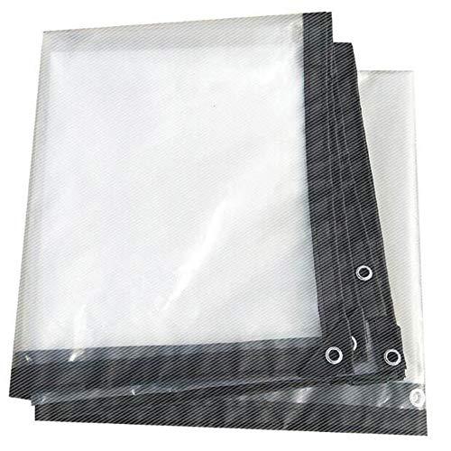 Kofferraum Gewächshaus Kunststoff-Tuch Transparent Thick Film Film Landwirtschaft Isolation Spezial Plus-Filmkultur Frostschutz- Persenning Fleisch und Regen,3 * 3m