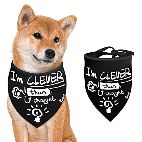 Petotw - Bandanas para Perros, Divertidas Bandanas para Perros, diseño de Eslogan...