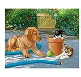 YYZCM Pintura por números Pintura de Lona 40x50cm para Adultos y niños con Pinturas acrílicas y 3 PincelesPerro Animal ( Sin Marco )
