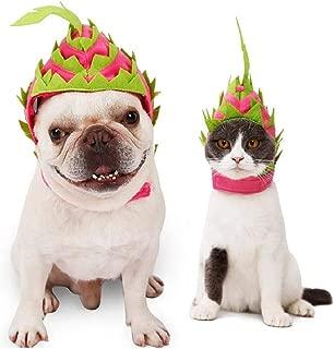 Petneces Cat Dog Halloween Costume Cap Pet Christmas Fruit Hat Party Accessory for Animals