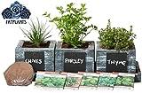 FATPLANTS Cedar Planter Box - Complete Herb Garden Indoor Kit - Herb...