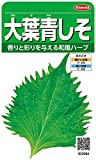 サカタのタネ 実咲野菜3084 大葉青しそ 00923084