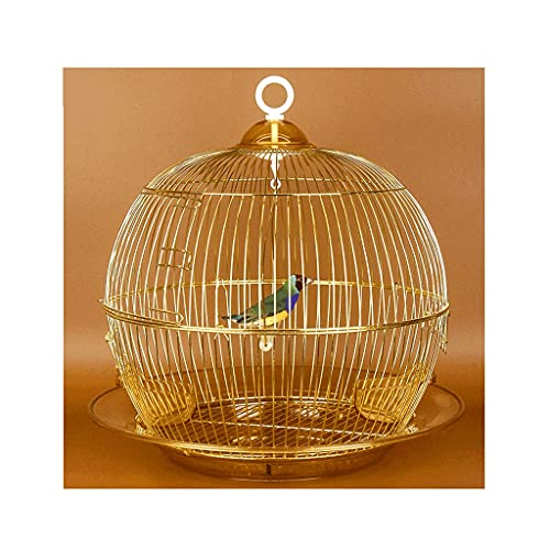 ZANZAN Gabbie per Uccelli Decorative Cage di Volo da 15 Pollici in Ferro battuto in Ferro battuto con Alimentatore Altalena e Vetro, Gabbia per Uccelli Portatile per Viaggi o Uso Domestico-Oro