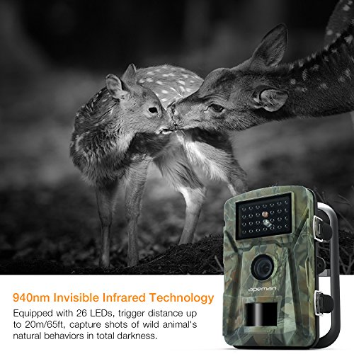 【New Version】 APEMAN Trail Camera 12MP 1080P 2.4