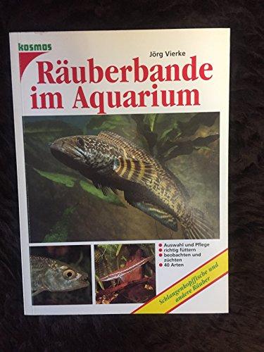 Räuberbande im Aquarium