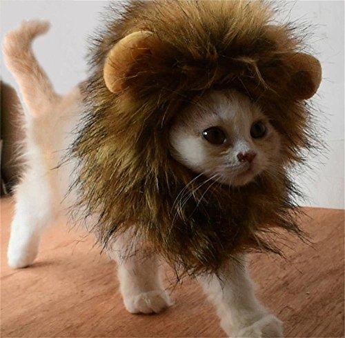 Bello Luna Peluca de Gato de Perro Mascota Peluca Divertida del le¨®n Cosplay de Mascotas