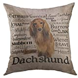 Mugod Decorative Throw Pillow Cover for Couch Sofa,Brown Long Dachshund Hair Dog Pet Animal Breed Home Decor Pillow case 18x18 Inch