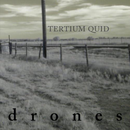 Tertium Quid
