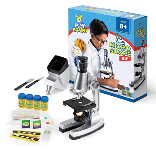 Play Brainy Kids Microscope Kit, 33-Pc. Set, Specimen and Blank Slides, Live Shrimp Hatchery, Projector, Tools and Accessories, Early Learning STEM Science, 50x-1200x Zoom