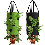 2 Pack Black and Green Upside Down Tomato & Herb Planter, Durable...