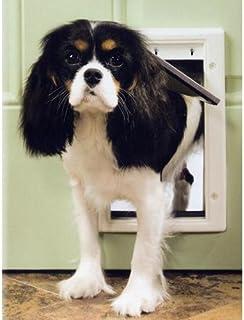 PetSafe Pet Door, Small, Brown