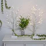 Vanthylit 2FT 24LT Pre-lit White Birch Tree Light with Timer Decorative Light Tabletop-Set of 2