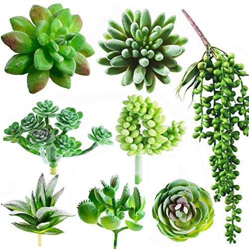 Dandevo 8 Pcs Unpotted Fake Succulent Plants Assorted Realistic Artificial Faux Plastic Silk Greenery Stems in Bulk String of Pearls Hanging Plant for Terrarium Home Wall Decor Large and Small