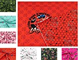 Miraculous - Ladybug - Stoff Paris auf Baumwoll - Jersey in