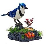 Homeng Jouet électronique pour oiseau chantant, oiseau dansant avec détecteur de mouvement, jouet chantant, Plastique, A2, 14cm x 16cm