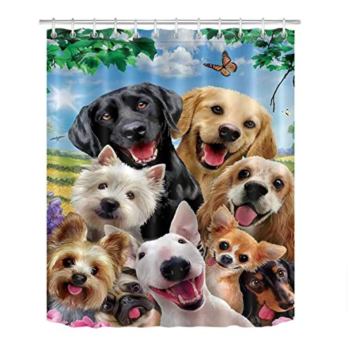 Silly Dogs Curtain