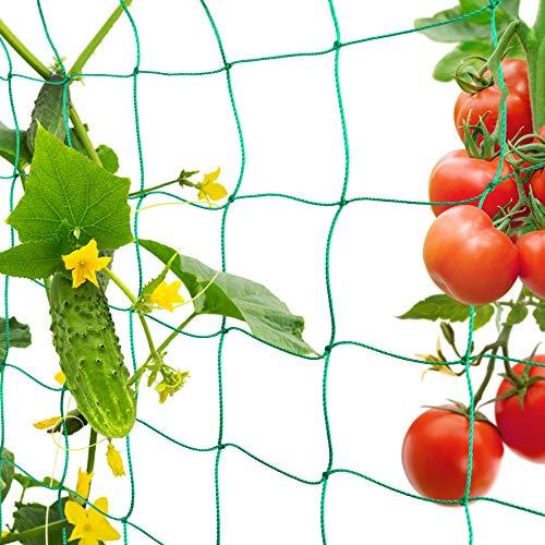 FORMIZON Filet de Jardin, Filet à Plantes Grimpantes, Filet à Ramer pour Récolte de Concombres, Légume, Tomates et Autres Légumes, Filet de Fixation pour Plantes Grimpantes (1.8 x 5m)